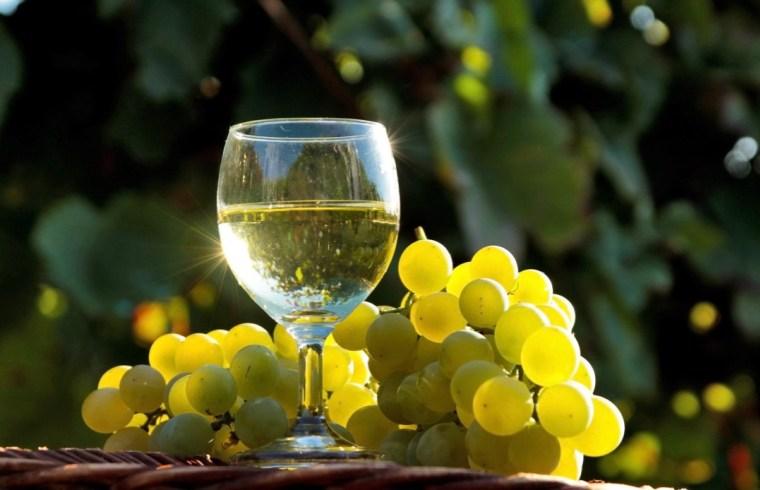 Vino bianco Bicchiere con grappolo rebola Formaggio di Fossa Riccione Magazine Piatti Tradizionali di Romagna